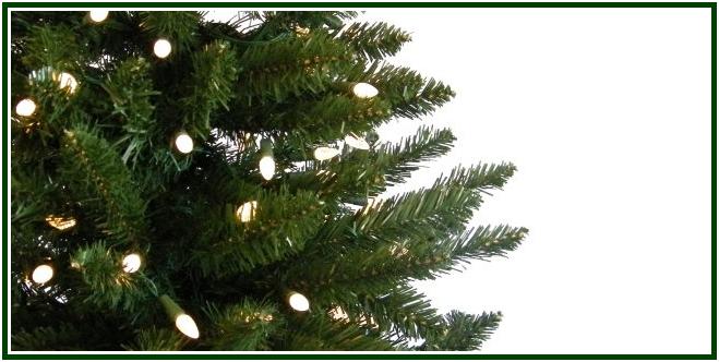 A Lenda da Árvore de Natal com mold