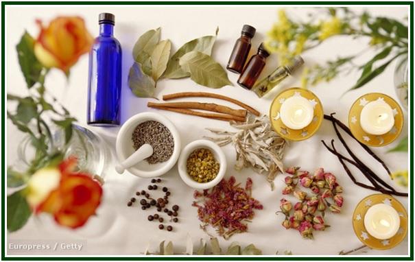A Escala Harmônica dos Aromas com mold