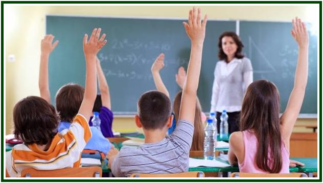 O Despertar do Educador