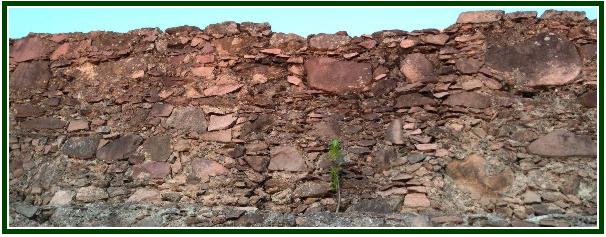 O Muro Que Protege a Humanidade