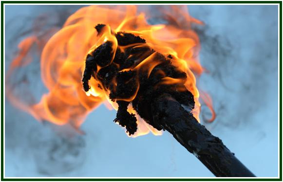 torch-bearers-com-mold